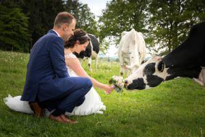hochzeitsshooting auf der kuhwiese koenigswinter